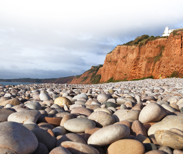 Books by the Sea in Budleigh Salterton, Devon