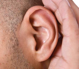 The effectiveness of our outer ear